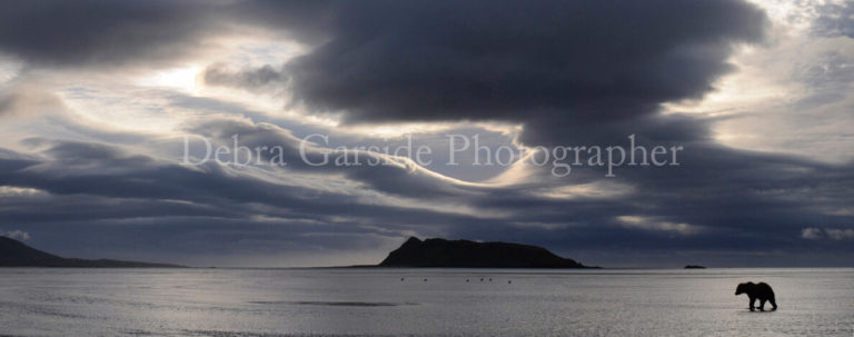 Storm Over Halo Bay
