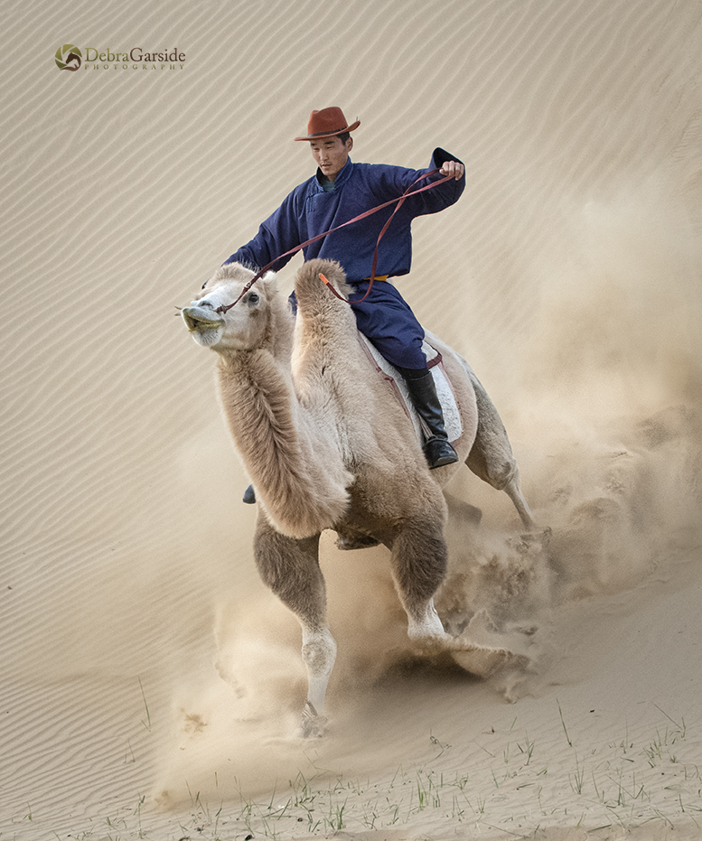 Bactrian Camel Rider