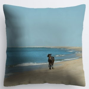 Sable Summer Pillow