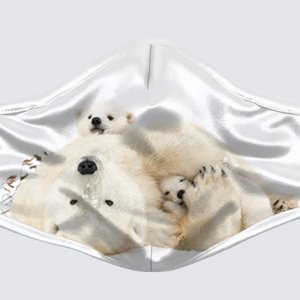 Cubby Hole Polar Bears Mask