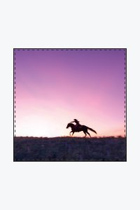Cowgirl Up! - Fine Art Scarves Square